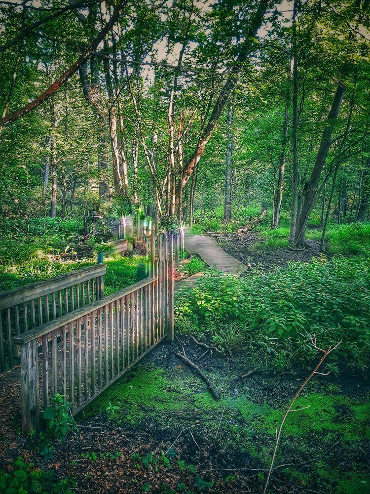Beechwood Park: 380 Hillsdale Ave, Hillsdale, NJ