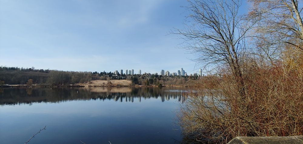 Burnaby Lake Regional Nature Park