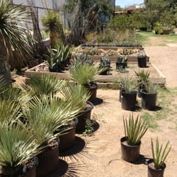 Photo Of One Way Plant Nursery Alpine Tx United States Native Plants