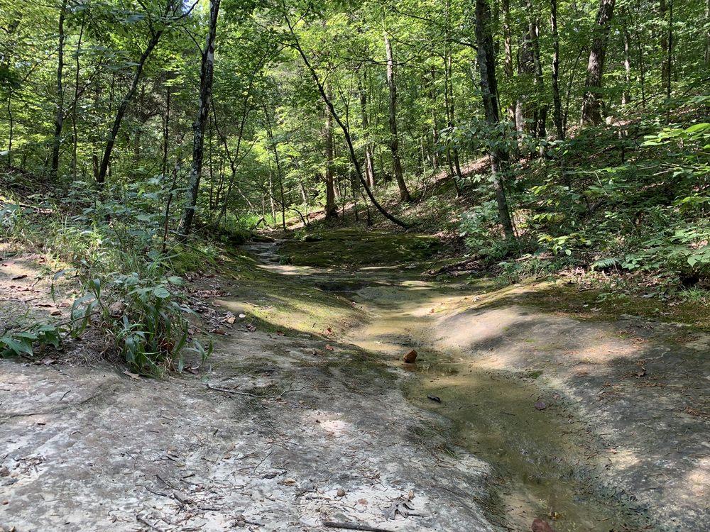 Don Robinson State Park: 9275 Byrnesville Rd, Cedar Hill, MO