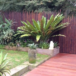 Shopping Home U0026 Garden · Photo Of Bamboo Habitat   Helensburgh New South  Wales, Australia