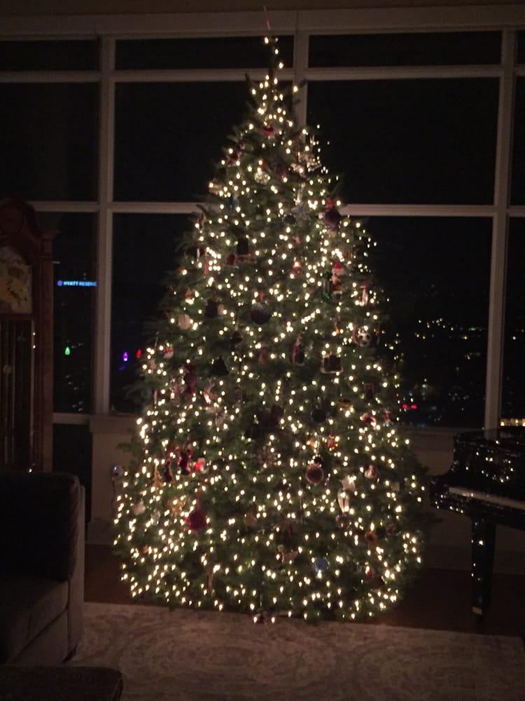 50 photos for MJW Christmas Trees - Photos For MJW Christmas Trees - Yelp