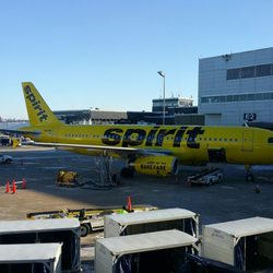 spirit airlines 31 photos 180 reviews airlines 7000 w 24th