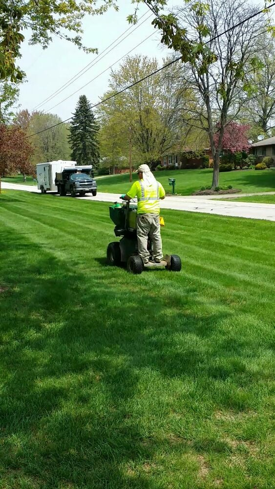 Here we are treating a lawn that we also mow yelp for Professional landscaping service