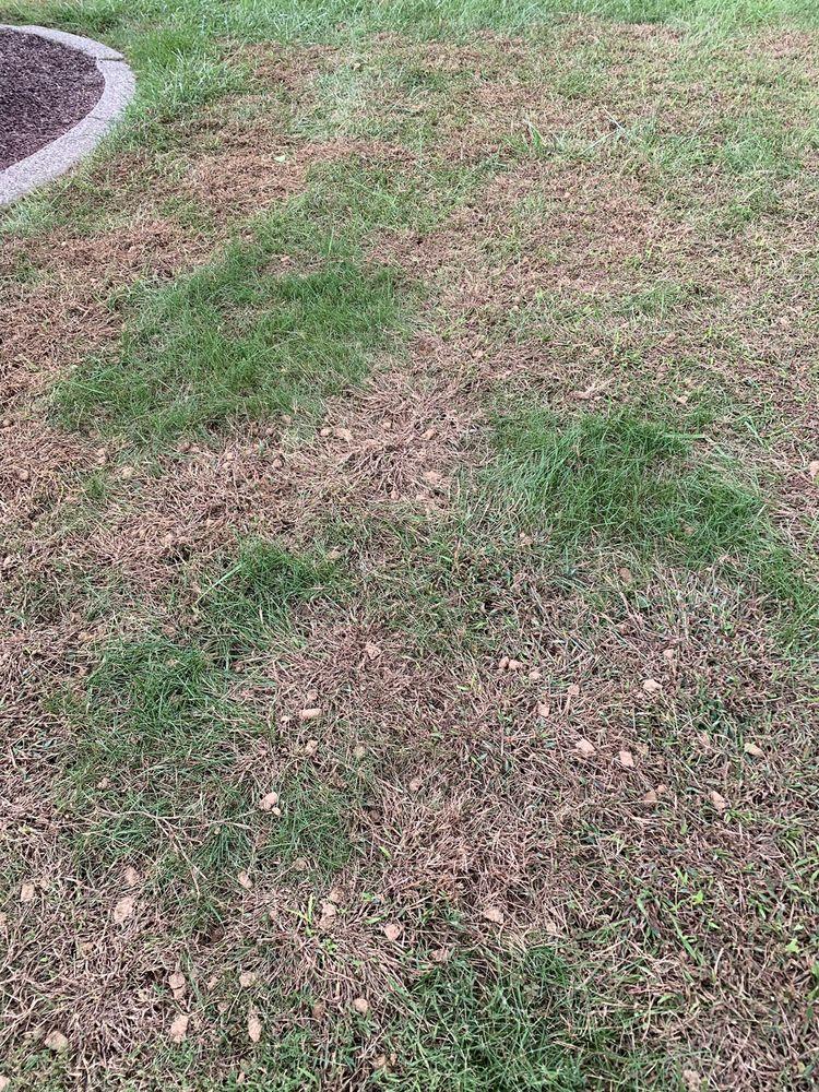 R & R Lawn Service: 6574 S Delaware Dr, Martins Creek, PA