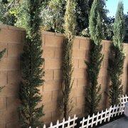 Photo Of Chatsworth Landscape Nursery Ca United States 1 Dead