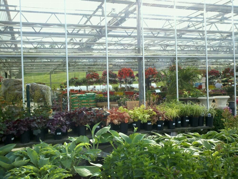 Potomac Garden Center: 8710 Fingerboard Rd, Urbana, MD