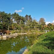 Japanischer Garten 39 Photos 29 Reviews Parks Kaiserswerther