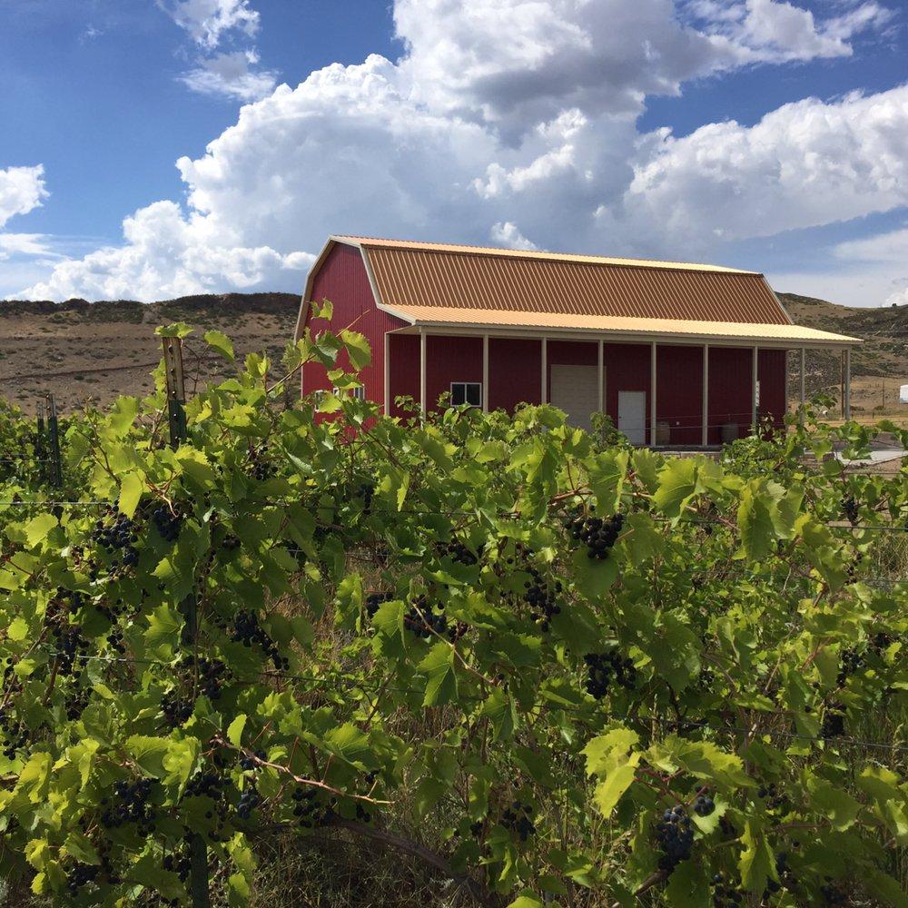 Ten Bears Winery: 5114 County Rd 23E, Laporte, CO