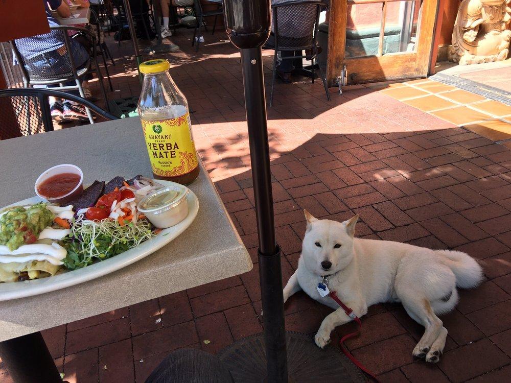 Santa Barbara Restaurants Yelp Dog Friendly