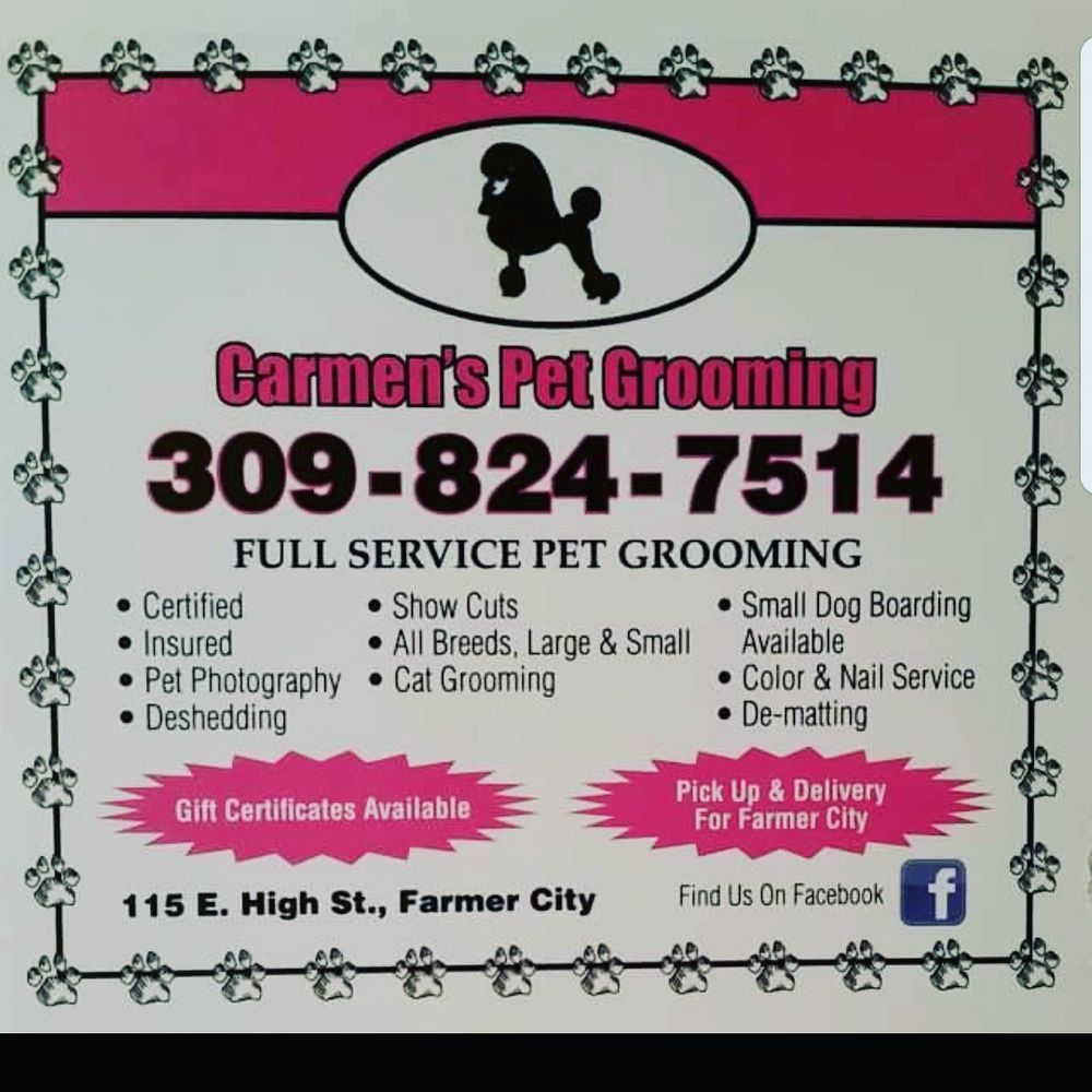 Carmens pet grooming pet sitting 115 e high st farmer city carmens pet grooming pet sitting 115 e high st farmer city il phone number yelp xflitez Image collections