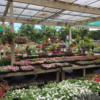 Photo Of Summerwinds Nursery Campbell Ca United States It Certainly