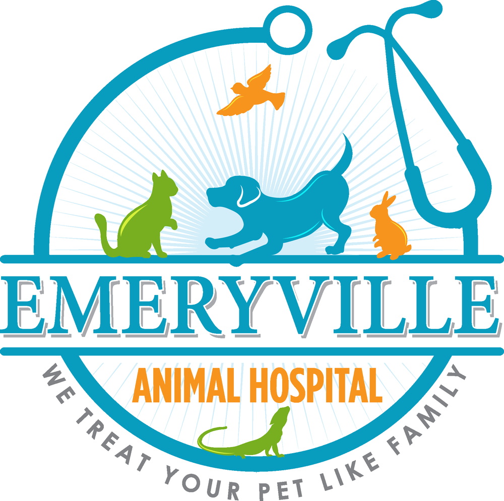 Emeryville Animal Hospital - Get Quote - Veterinarians - 106 Emery ...