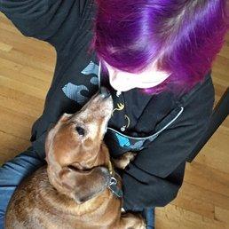Happy Hearts Pet Sitting - 20 Photos - Dog Walkers - Binghamton, NY