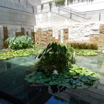 'Photo of The Getty Villa - Pacific Palisades, CA, United States' from the web at 'https://s3-media3.fl.yelpcdn.com/bphoto/cqaQn4wLp24NSlbC22ovoA/348s.jpg'