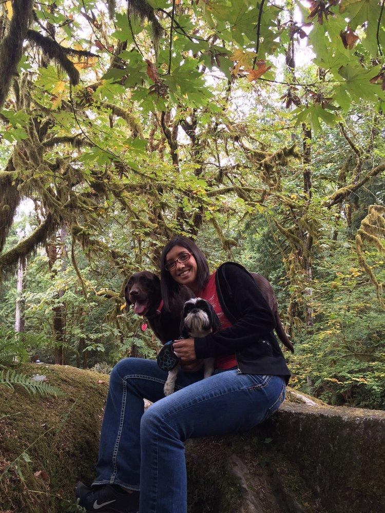 Quinault Rain Forest: 6094-B US Hwy 101, Amanda Park, WA