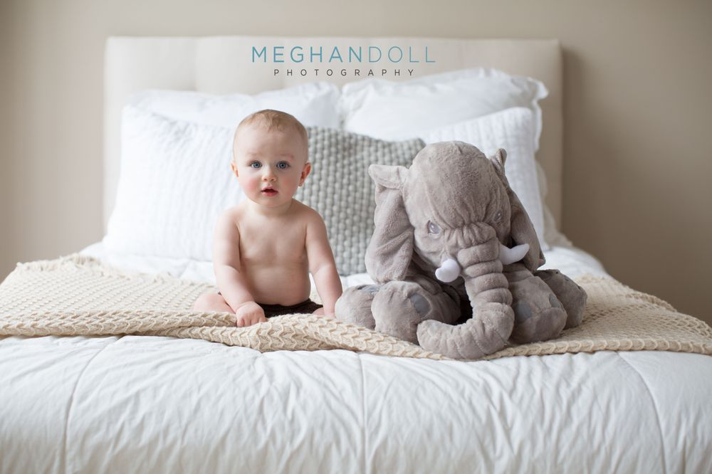 Meghan Doll Photography