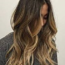 Hair Color Specialist - - Hair Stylists - 423 Beatty Dr ...