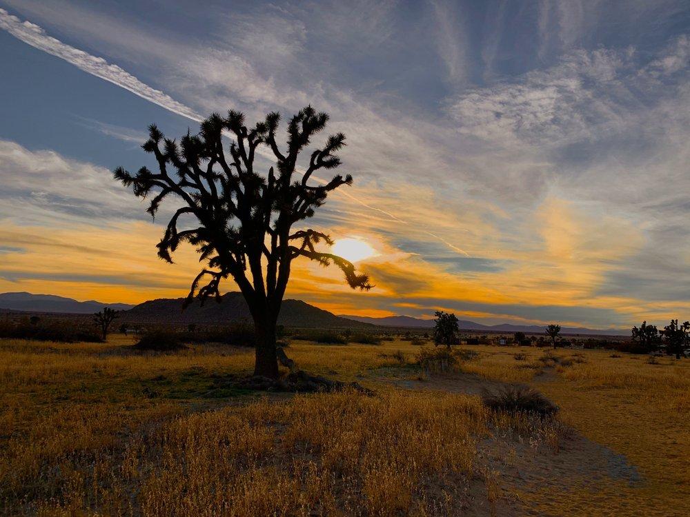 Saddleback Butte State Park: 17150 E Ave J, Lancaster, CA