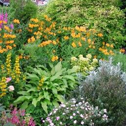 Anne Macfie Garden Design 12 Photos Professional Services 9