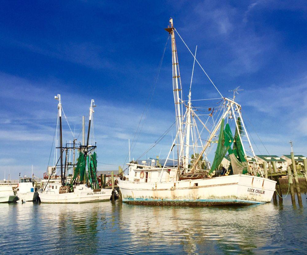 Flipper Finders Boat & Sea Kayak Tours