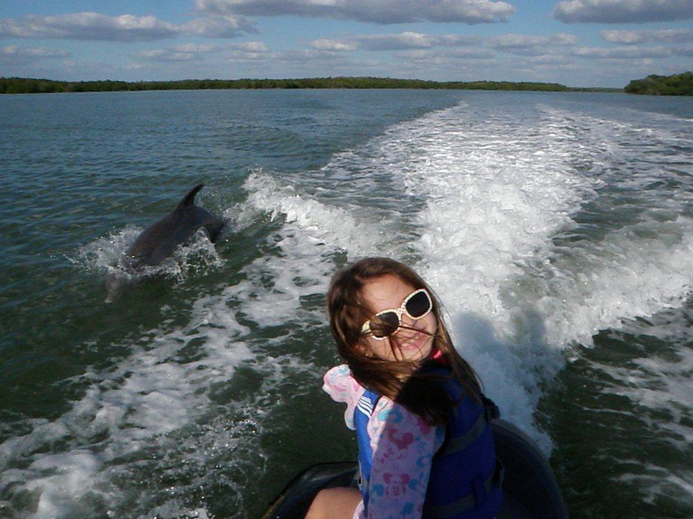 Avi's Water Sports | Marco Island Dolphin Jet Ski Rental Tours: 909 Collier Ct, Marco Island, FL
