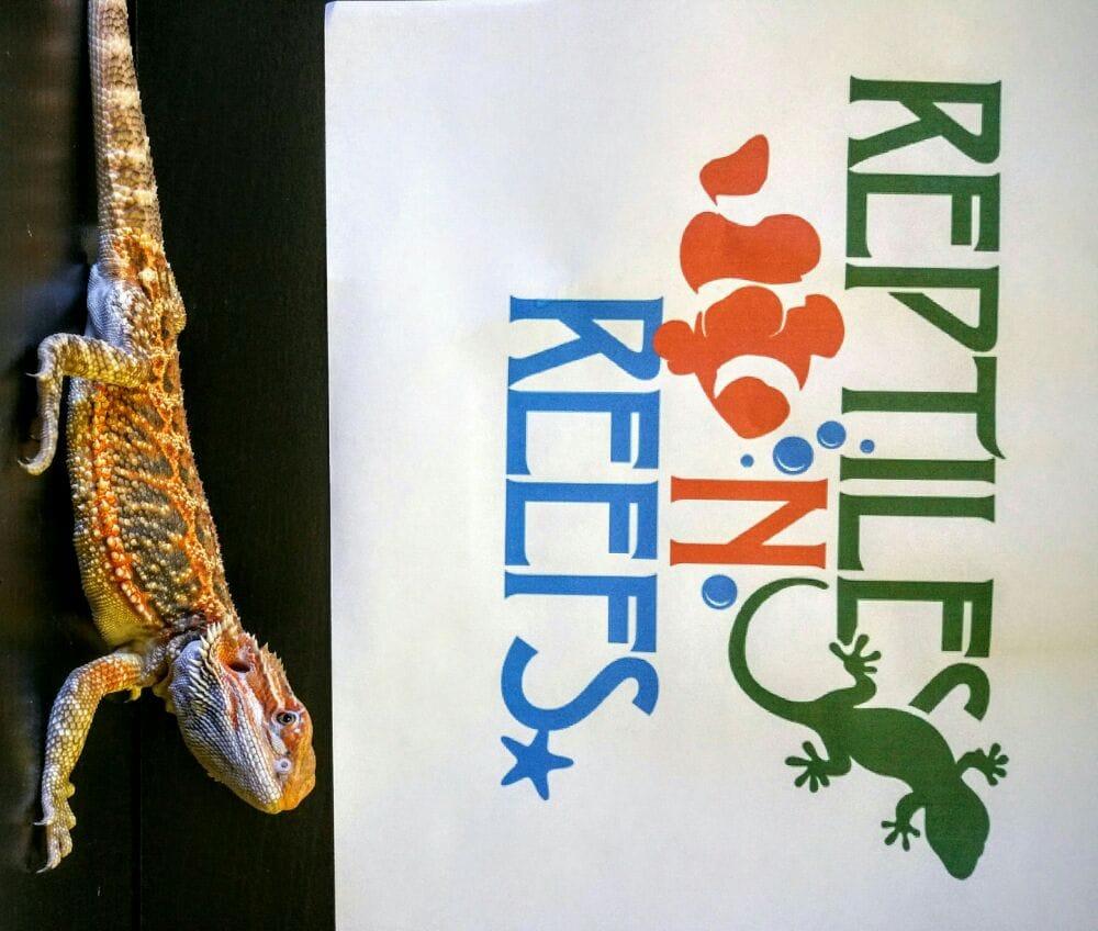 Tucson Reptile Show