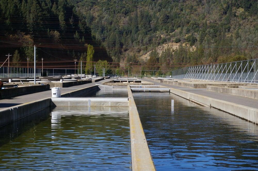 Trinity Power Plant: 9 Miles From Lewiston, Lewiston, CA