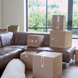 Photo Of DC Professional Movers   Washington, DC, United States