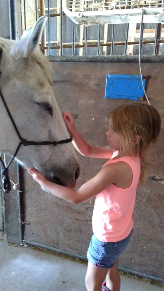 Coyote Creek Tack & Stables: 300 N 3500 E, Sigel, IL