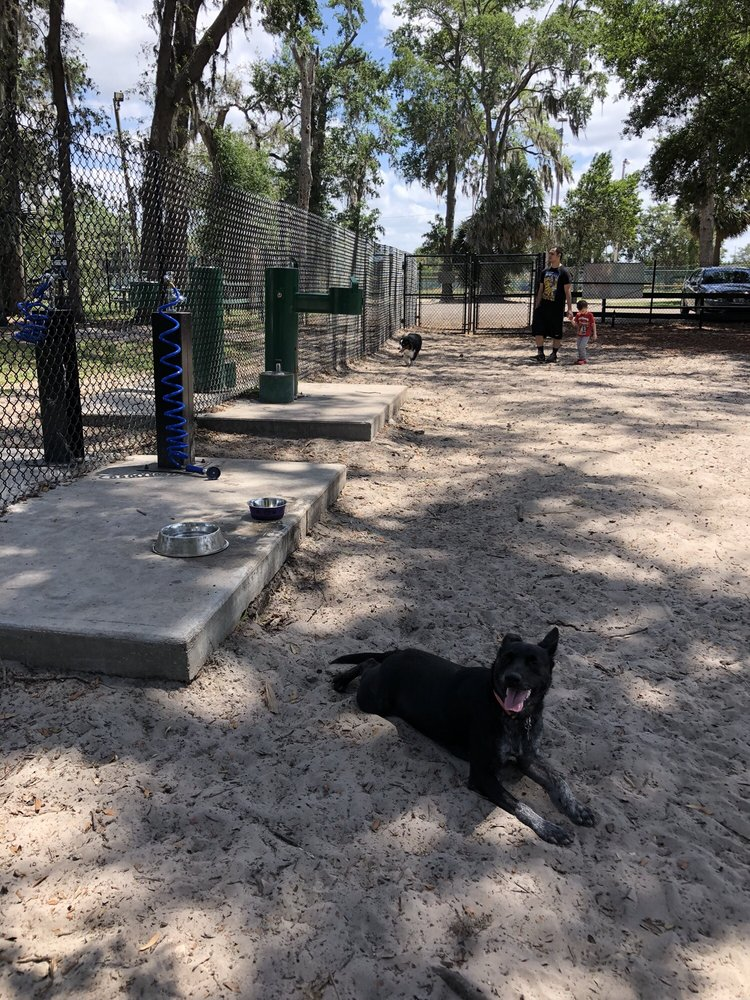 Arbor Park Dog Park: 1405 N Grant St, Longwood, FL