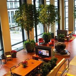 Botanica Interior Plantscapes - Office Equipment - 15441 Campanile Ct, Baton Rouge, LA - Phone Number - Yelp