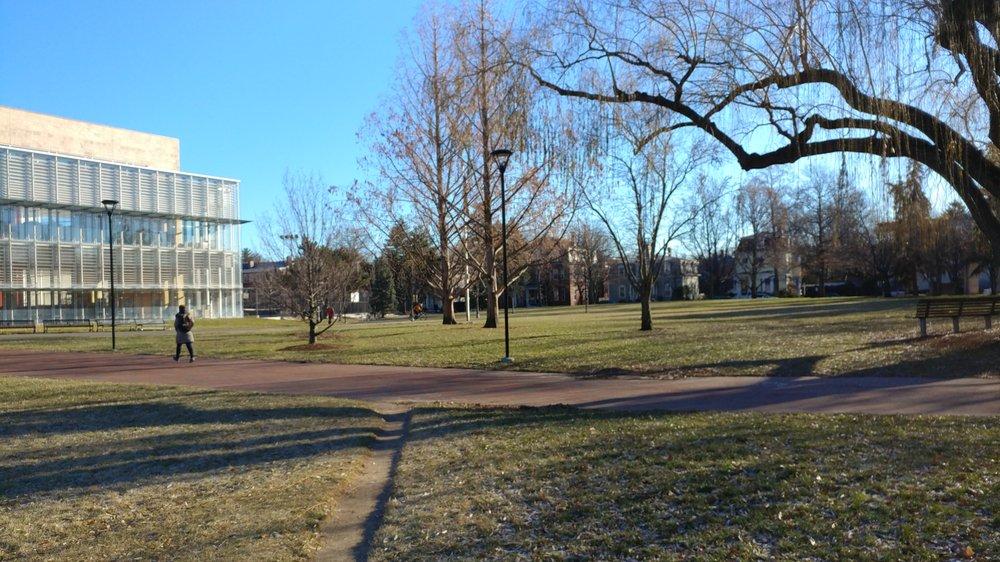Joan Lorentz Park: Broadway And Ellery St, Cambridge, MA