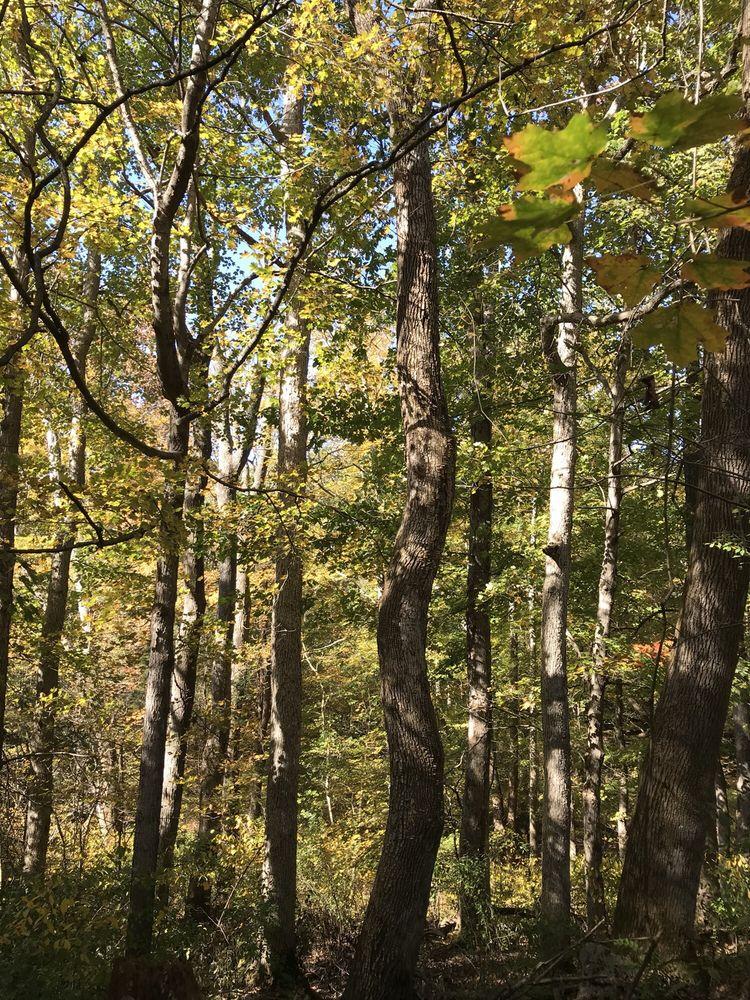 Creasey Mahan Nature Preserve