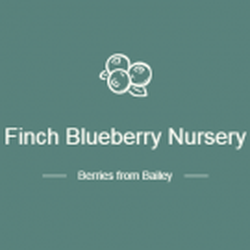 Photo Of Finch Blueberry Nursery Bailey Nc United States