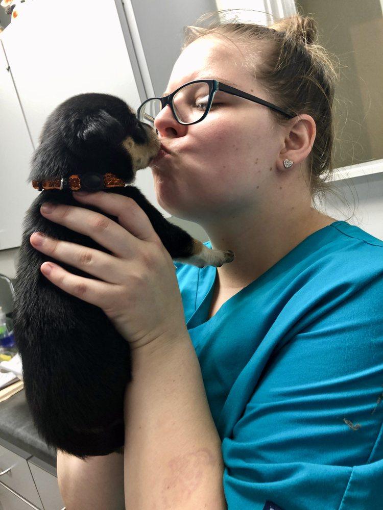 Los Robles Animal Hospital: 1314 Thomasville Rd, Tallahassee, FL