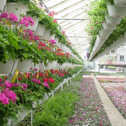 Photo Of Bremec Greenhouse And Nursery Chesterland Oh United States Grows