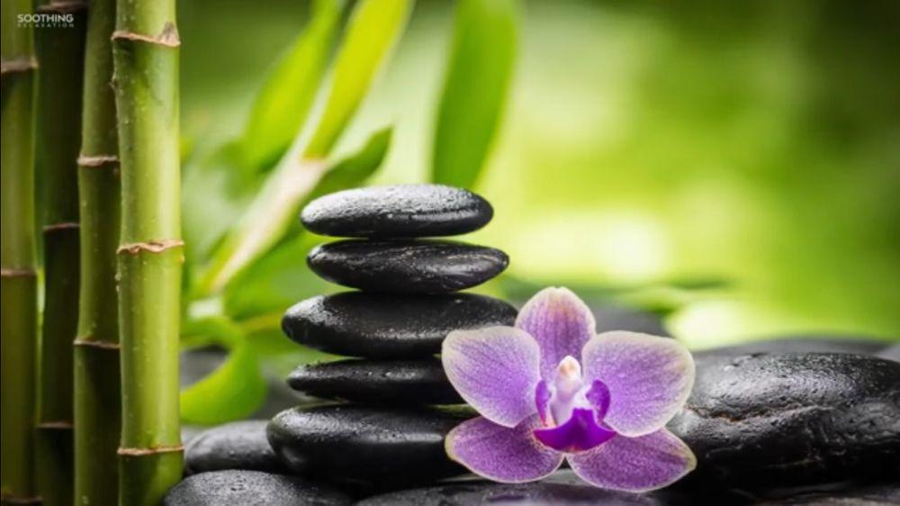 Tian's Chinese Massage Therapy: 1011 W Main St, Grove City, PA