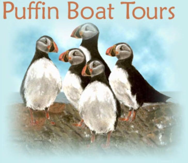 Donelda S Puffin Boat Tours Englishtown Ns