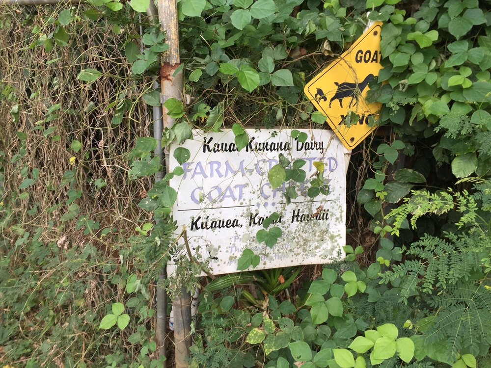 Kauai Kunana Dairy: 4552 Kapuna Rd, Kilauea, HI