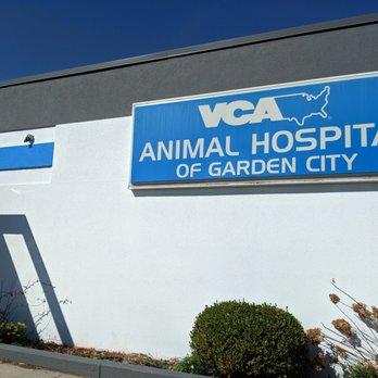VCA Animal Hospital of Garden City - (New) 36 Photos & 19