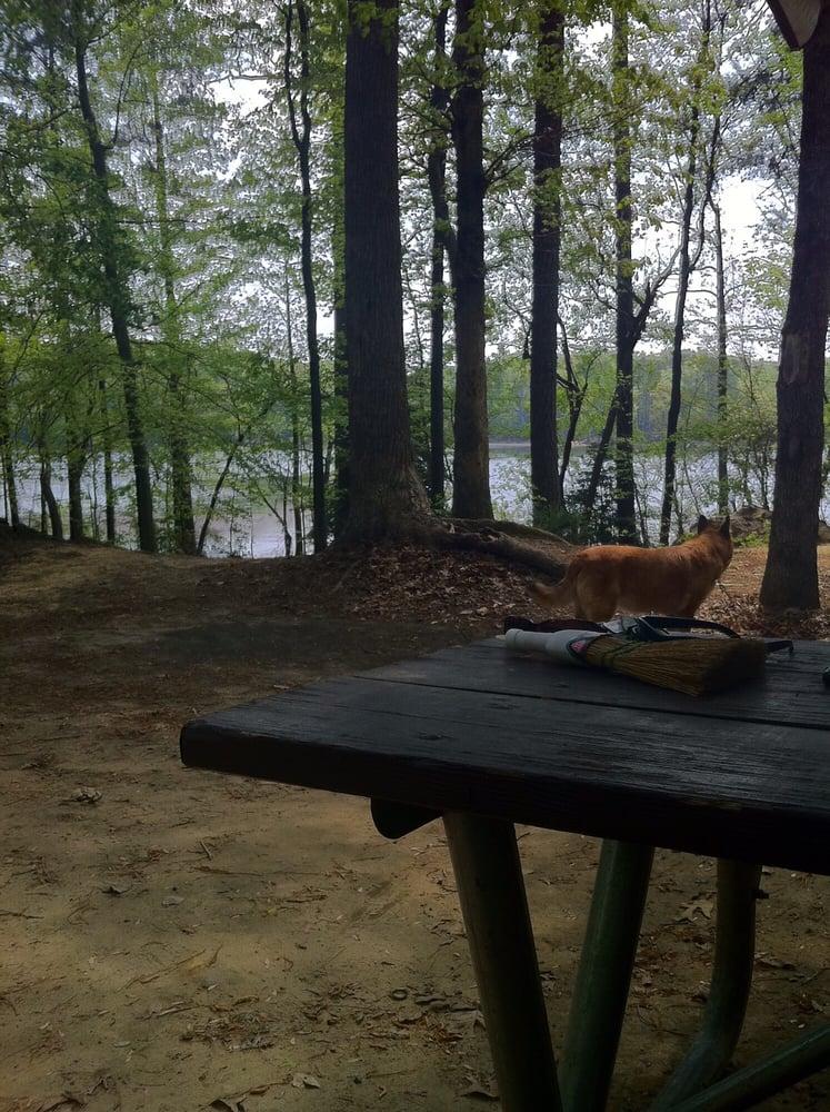Dog Friendly Canoe Rentals Near Me
