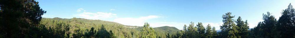 Easy Yoke Ranch: 4800 Northcreek Rd, Beulah, CO