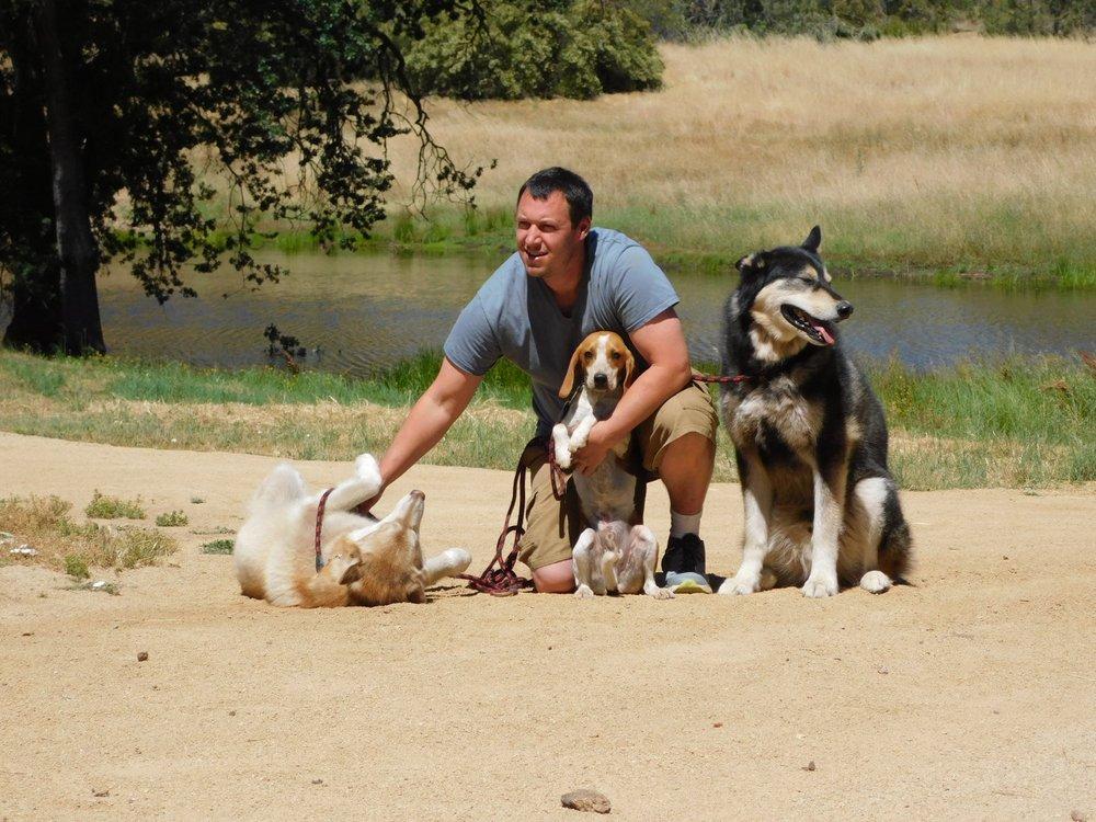 Ace Dog Training Services: San Luis Obispo, CA