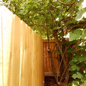 Photo Of Texas Apache Fence Richmond Tx United States Our Yard Has
