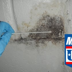 Photo Of Mold Test Usa Columbia Sc United States Testing And
