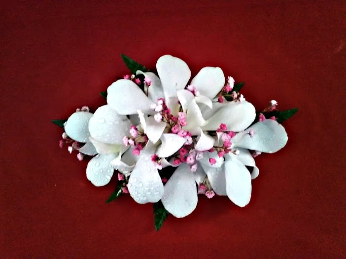 White dendrobium orchid corsage with pink wax flower yelp photo of guadalajara flowers san jose ca united states white dendrobium orchid mightylinksfo