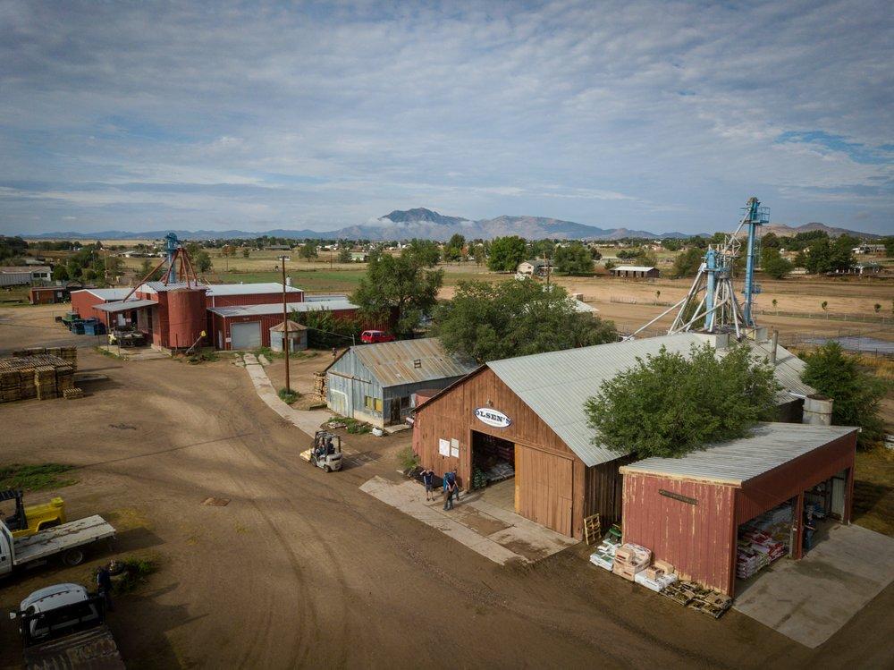 Olsen's Grain - Chino Valley: 344 Hwy 89, Chino Valley, AZ