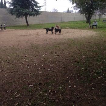 Glenbrook Dog Park
