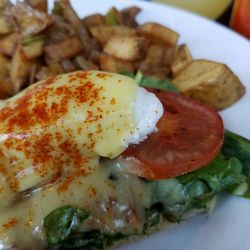 Photo of The Hub   Gig Harbor  WA  United States  Florentine BenedictThe Hub   43 Photos   107 Reviews   American  Traditional    1208  . Gig Harbor Restaurant Guide. Home Design Ideas